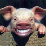 naturesdental dr olga isaeva pig-smiling